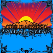 Tribal Seeds: The Harvest