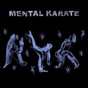 Thumpasaurus: Mental Karate
