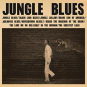 C.W. Stoneking: Jungle Blues