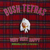 Bush Tetras: Very Very Happy