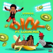 Dick (feat. Ludacris)