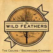 The Wild Feathers: The Ceiling / Backwoods Company