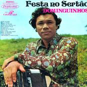 Festa No Sertão