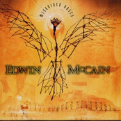 Edwin McCain: Misguided Roses
