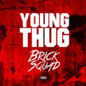 Brick Sqaud