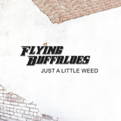 Flying Buffaloes: Just a Little Weed - Single