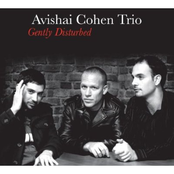 Avishai Cohen Trio: Gently Disturbed (Bonus Track Version)