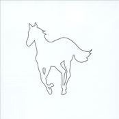 White Pony [Added Track]