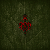 Wardruna: Runaljod – Yggdrasil