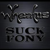 Wheatus: Suck Fony