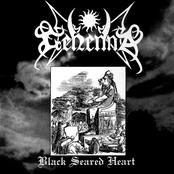 Black Seared Heart