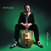 David Gogo: Different Views