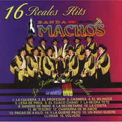 Banda Machos: 16 Reales Hits