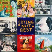 CRYING NUT 25th Anniversary Best Album
