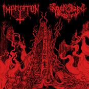 Imprecation: Diabolical Flames of the Ascended Plague