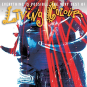 Everything Is Possible: The Very Best Of