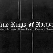 True Kings Of Norway (Split)