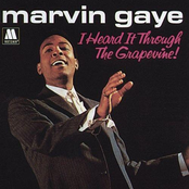 I Heard It Through The Grapevine / In The Groove (Stereo)