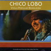 Viola Popular Brasileira
