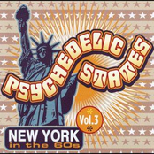 Psychedelic States: New York in the 60s, vol. 3