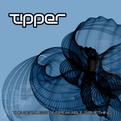 Tipper: The Seamless Unspeakable Something