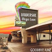 Universal Mega Love