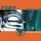 Fuel: Something Like Human