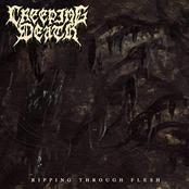 Creeping Death: Ripping Through Flesh