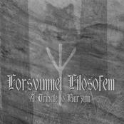 Forsvunnet Filosofem - A Tribute to Burzum
