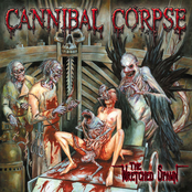 Cannibal Corpse: The Wretched Spawn