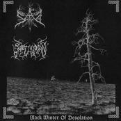 Black Winter of Desolation (Split)
