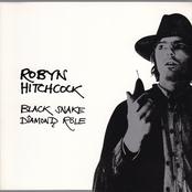 Robyn Hitchcock: Black Snake Diamond Role