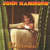 John Hammond Jr.: Bluesman