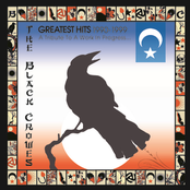 Black Crowes: Greatest Hits 1990-1999: A Tribute To A Work In Progress...