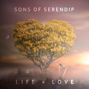 Sons of Serendip: Life + Love