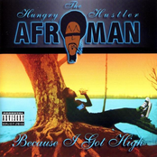 Afroman: Because I Got High