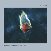 Gryffin: Nobody Compares To You