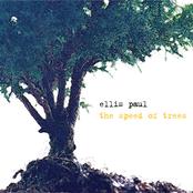 Ellis Paul: The Speed of Trees