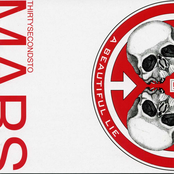 A Beautiful Lie (Deluxe Editio