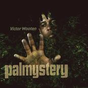 Victor Wooten: Palmystery