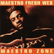 Maestro Zone EP