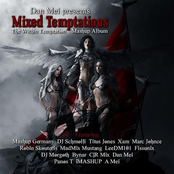 Mixed Temptations - The Within Temptation Mashup Album