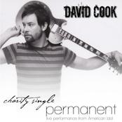 Permanent (American Idol Charity Song) - Single