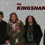 the kingsnakes