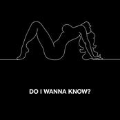 Do I Wanna Know? - Single