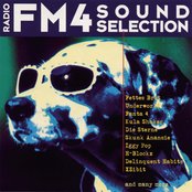 FM4 Soundselection Vol. 1