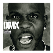 The Best Of DMX cover art