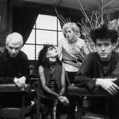 Siouxsie and the Banshees 4e95dd5efedd48c3b2609ae0d3dad87d