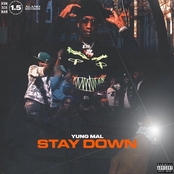 Stay Down - Single