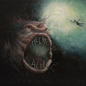 Helms Alee: Sleepwalking Sailors